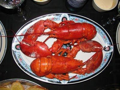 lagosta-suada