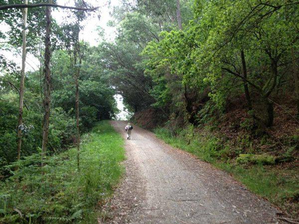 Caminho Português de Santiago entre Pontevedra e Caldas de Reis