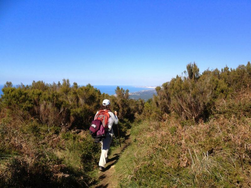 percurso pedestre serra de sintra