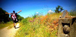 caminho frances de santiago