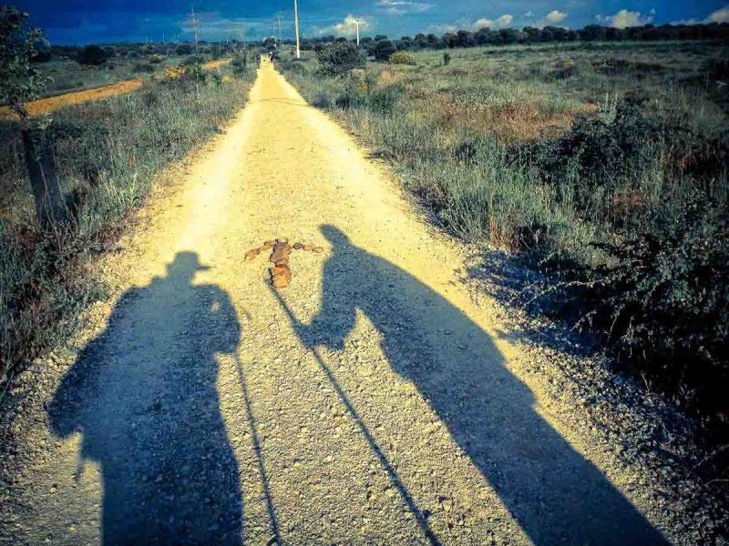 camino-frances-santiago-sombra-peregrinos