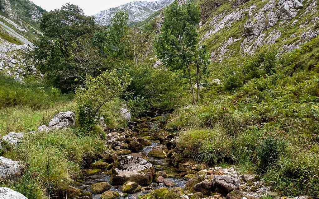 bulnes-picos-de-europa-trekking-vagamundos-4