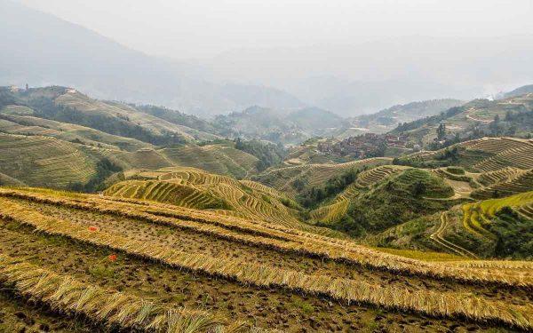 roteiro-de-viagem-china-terracos-de-arroz
