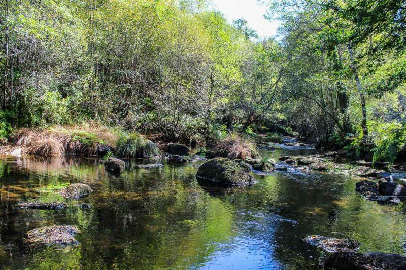 Lalín rio arnego ponte dos cabalos