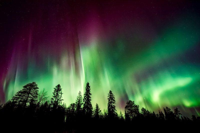 auroras boreas
