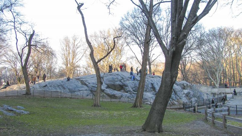 nova iorque central park