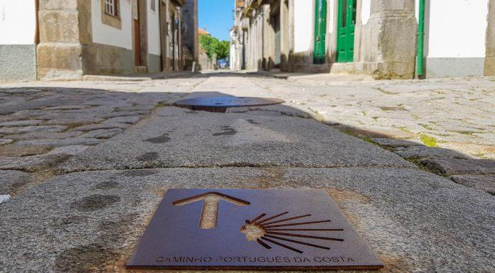 Guia Caminho Português da Costa - Etapas e Mapa