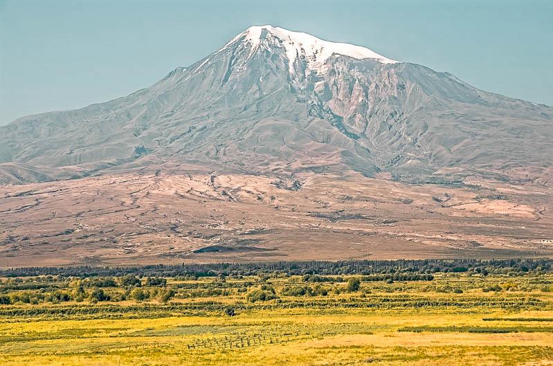 Ararate
