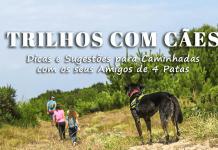 Trilhos com Cães