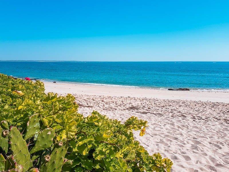 Praia dos Coelhos - Arrabida