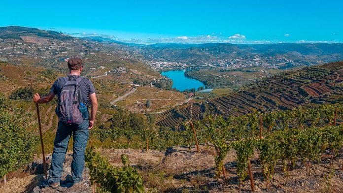 Trilho Vinho Do Porto   PR2 Lamego