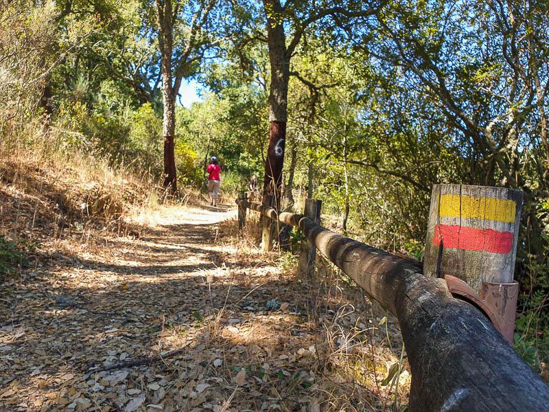 Visitar Macedo de Cavaleiros e Geopark Terras de Cavaleiros: roteiro com o que ver e fazer