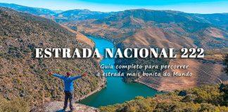 Roteiro Estrada Nacional 222 | Douro: roadtrip pela estrada mais bonita do mundo