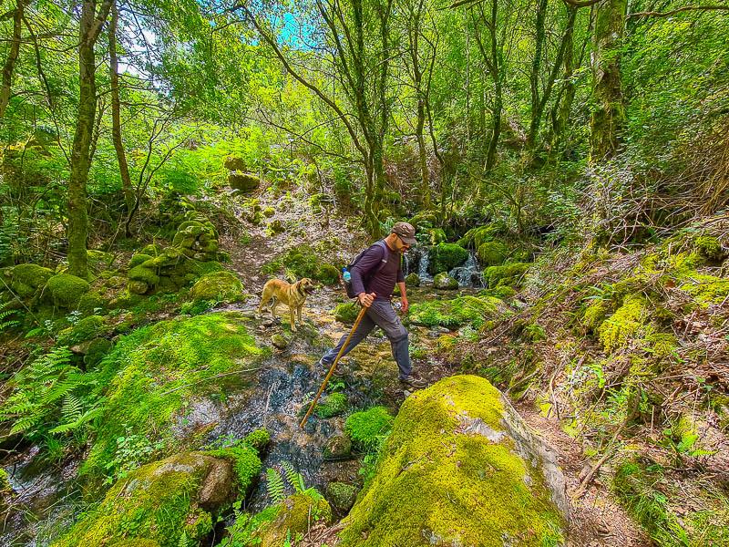 Lagoa dos Druidas e Trilho Mistura das Águas (Peneda – Gerês): como ir visitar